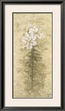 Lily Fair Prints by B. J. Zhang