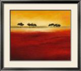 Tree Timberline III Prints by Hans Paus