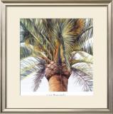 Roma Palm Art by Lois Brezinski