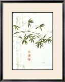 Bambuszweig Prints by Michael Ferner