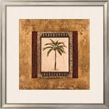 Stately Palm II Prints by  Mindeli