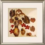 Amazona I Prints by Margaret Hughlock