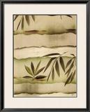 Vizcaya Ferns I Prints by Muriel Verger