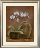 Orchid Antiquity I Posters by Jane Tava