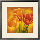 Orange Tulips II Posters by David Pedersen