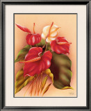 Red and White Anthuriums Framed Giclee Print by Frank Oda