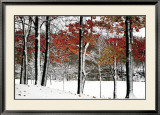 SnowFall Prints by Burney Lieberman