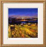 Harvest Sunset Limited Edition Framed Print by Davy Brown