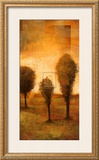 Transitional Moment II Prints by Albert Williams