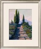 Bella Vista Print by Alan Stephenson