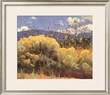 Chamisa In Bloom Prints by E. Martin Hennings