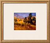 SouThern Vineyard Hills Art by Philip Craig