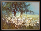 Field of Daisies Posters by G. Michaud