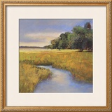 Low Country Landscape II Prints by Adam Rogers