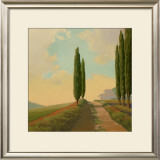 Tuscan Path II Posters by Allan Stephenson
