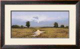 Evening on a Marsh Prints by Peter Sculthorpe