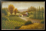 Vineyard In The Sun II Prints by Michael Marcon