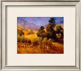 SouThern Vineyard Hills Prints by Philip Craig