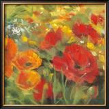 Oriental Poppy Field I Poster by Carol Rowan