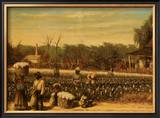 Picking Cotton Prints by William Aiken Walker