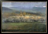Misty View Prints by Seth Winegar