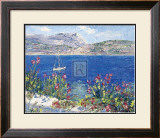 Villefranche Bay Prints by T. Forgione