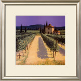 Vineyard Shadows Prints by David Short
