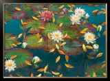 Lily Pad I Prints by Elise Lunden