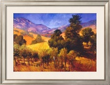 SouThern Vineyard Hills Poster by Philip Craig