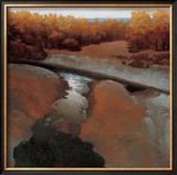 Desert Creek Poster by Marc Bohne