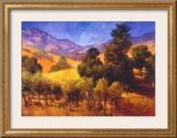 SouThern Vineyard Hills Prints by Philip Craig