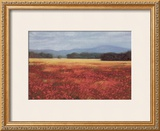 French Poppy Fields Print by David Schock