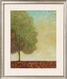Beautiful Day I Prints by John Zaccheo