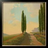 Tuscan Path II Prints by Allan Stephenson