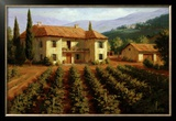 Tuscan Vineyard Poster by Roger Williams