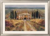 Toscan Vigna Poster by Marilyn Hageman