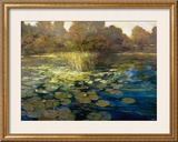 Waterlilies Poster by Philip Craig