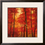 Vermilion Wood Prints by Robert Striffolino