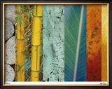 Rainforest Zen II Limited Edition Framed Print by M.J. Lew