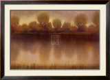 Marsh of the Warm Sunset Poster by Albert Williams