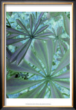 Woodland Plants in Blue III Posters by Sharon Chandler
