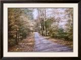 Autumn Path Prints by Diane Romanello