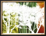 Rainforest Life II Limited Edition Framed Print by M.J. Lew