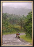 Cuban Landscape Framed Giclee Print by Charles Glover