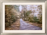 Autumn Path Prints by Diane Romanello