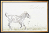 Simply Zebra Print by Susann &amp; Frank Parker