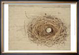 Nesting III Prints by Meghan McSweeney