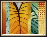Rainforest Zen I Limited Edition Framed Print by M.J. Lew