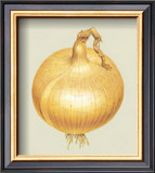 Onion Posters by Alex Bloch