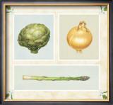 Antique Vegetables Art by Alex Bloch